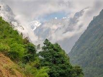 Picchi di montagna parzialmente in nuvole con gli alberi nella priorità alta Immagine Stock Libera da Diritti