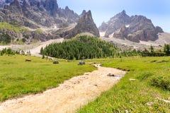 Picchi di montagna vista, paesaggio delle dolomia Immagine Stock