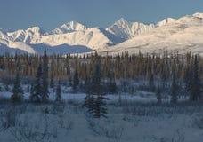 Picchi di Snowy dell'intervallo di Alaska fotografia stock