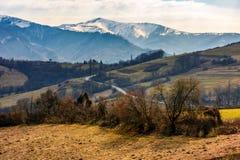 Picchi di Snowy della cresta della montagna carpatica Fotografia Stock