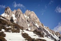 Picchi di Snowy di una montagna Fotografia Stock