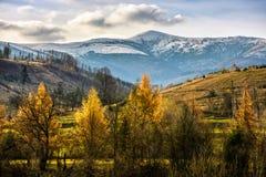 Picchi di Snowy sopra la foresta di autunno Fotografie Stock Libere da Diritti