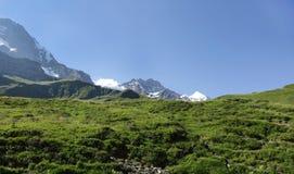 Picchi di Wengen Jungfrau e di Jungfrau delle alpi svizzere sul modo a Kleine Scheidegg Fotografia Stock