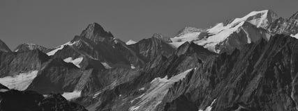 Picchi nelle alpi svizzere Immagine Stock