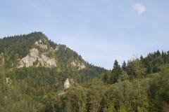 Picchi in Tatras, Slovacchia Fotografie Stock