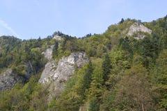 Picchi in Tatras, Slovacchia Immagini Stock