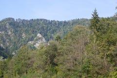 Picchi in Tatras, Slovacchia Immagine Stock