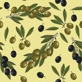 Picchiettio delle olive Fotografia Stock Libera da Diritti