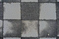 Picchiettio quadrato bagnato del blocco in calcestruzzo fotografia stock