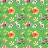 Picchiettio senza cuciture dei fiori tropicali botanici acquerelli dell'illustrazione Fotografia Stock