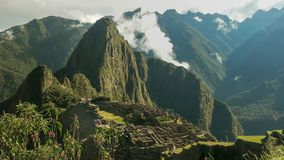 Picchu Machu και άγριες ορχιδέες σε ένα misty πρωί στοκ εικόνα με δικαίωμα ελεύθερης χρήσης