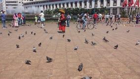 piccione in città Fotografie Stock