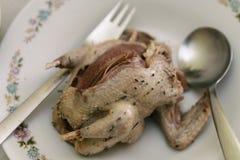 Piccione dell'arrosto su un piatto pronto per dinning Immagini Stock Libere da Diritti