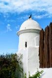 Piccione sulla torre bianca in Tenerife Fotografie Stock Libere da Diritti