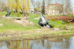Piccione in volo sopra il fiume Fotografie Stock