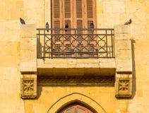 Piccioni a Beirut, Libano fotografie stock libere da diritti