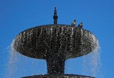 Piccioni nella fontana Fotografia Stock Libera da Diritti