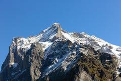 Picco alpino di Wetterhorn come visto da Grindelwald Immagine Stock Libera da Diritti