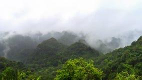 Picco in Cat Ba National Park Fotografia Stock Libera da Diritti