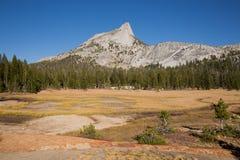 Picco della cattedrale e prati, parco nazionale di Yosemite Fotografia Stock