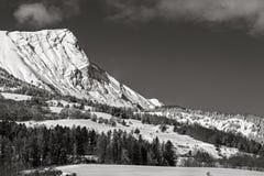 Picco di Aiguille coperto in neve, Hautes-Alpes, alpi, Francia Fotografia Stock Libera da Diritti