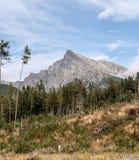 Picco di Krivan in alte montagne di Tatras in Slovacchia Fotografie Stock
