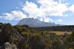 Picco di Mawenzi, il Kilimanjaro fotografia stock libera da diritti