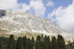Picco di montagna alpino con gli alberi in priorità alta. Immagine Stock