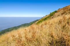 Picco di montagna con il prato asciutto Fotografia Stock Libera da Diritti