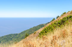 Picco di montagna con il prato asciutto Fotografie Stock