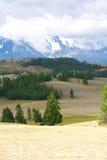 Picco di montagna dello Snowy Fotografie Stock