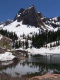 Picco di montagna dello Snowy e lago gelido Fotografie Stock