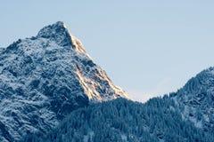 Picco di montagna di Snowy nelle alpi alle prime luci Fotografie Stock Libere da Diritti