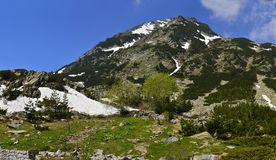 Picco di montagna di Vihren coperto di neve Fotografie Stock Libere da Diritti