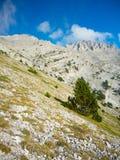 Picco di Mytikas osservato da lontano Immagini Stock