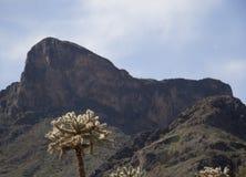 Picco di Picacho Immagine Stock Libera da Diritti