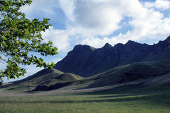Picco di Tamata, baia di Hawkes, Nuova Zelanda. Fotografia Stock Libera da Diritti