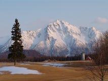 Picco pionieristico nell'Alaska Immagine Stock