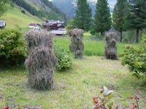 Piccola agricoltura in Austria Fotografia Stock