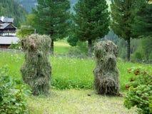 Piccola agricoltura in Austria Immagine Stock Libera da Diritti