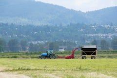 Piccola attrezzatura dell'azienda agricola per rivoltare il fieno Immagine Stock Libera da Diritti
