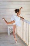 Piccola ballerina Fotografia Stock