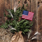 Piccola bandiera americana con la felce su fondo di legno rustico invecchiato e stagionato Fotografia Stock