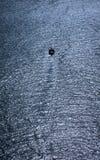 Piccola barca che naviga fuori nell'immensità del mare fotografia stock
