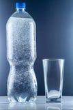 Piccola bottiglia di acqua Fotografia Stock