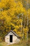 Piccola cabina nella sosta di condizione naturale del ponticello, Wiconsin Fotografia Stock