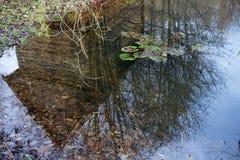Piccola cabina riflessa nel lago immagine stock