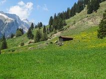 Piccola capanna alpina in alpi svizzere vicino a Oeschinensee in Kandersteg Fotografia Stock