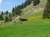 Piccola capanna alpina in alpi svizzere vicino a Oeschinensee in Kandersteg Immagini Stock