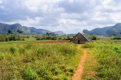 Piccola capanna in valle di Vinales, Cuba Immagine Stock Libera da Diritti